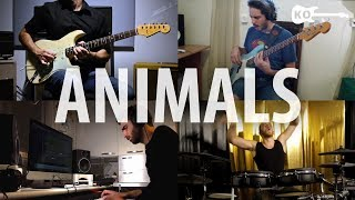 Animals - Band Cover - Kfir Ochaion