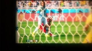 بازی ایران - آرژانتین جام جهانی ۲۰۱۴  Iran vs Argentina world cup 2014 Iran penalty not given