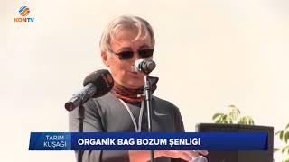 TARIM KUŞAĞI - ORGANİK BAĞ BOZUM ŞENLİĞİ - 06 EKİM 2017