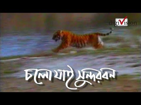 Xxx Mp4 চলো যাই সুন্দরবন Lets Go Sundarban 3gp Sex