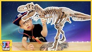 공룡박사 서준이가 공룡뼈 화석을 발굴? 티라노사우르스 화석키트 장난감 놀이 Jurassic Dinosaur T-REX Fossil Toy [제이제이 튜브-JJ tube]