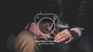 How Deep Is Your Love (The Bird and The Bee)