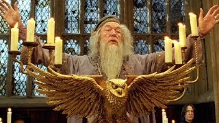 Top 10 Movie Wizards