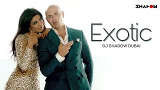Exotic | Priyanka Chopra Ft Pitbull | DJ Shadow Dubai Remix