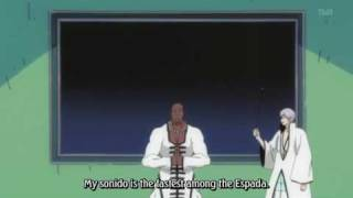 Shinigami Illustrated Picture Book - Arrancar Encyclopedia: Sonido vs Shunpo