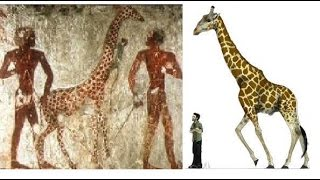 5 Mysterious Clues That May Prove Giants Did Exist