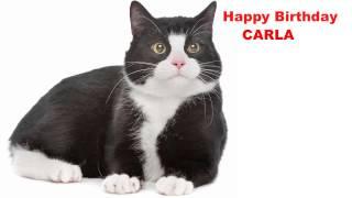 Carla  Cats Gatos - Happy Birthday