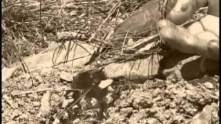 Forgotten Gunfighters: The Pleasant Valley War