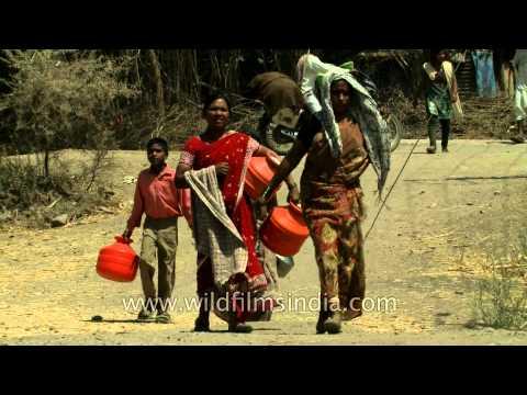 People travel for water: Manegaon village, Maharashtra