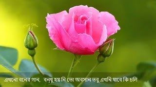Amar Mollika Bone - Rabindra Sangeet