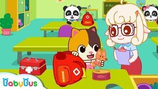 Baby Kitten Makes An Emergency Bag | Super Panda Rescue Team | Earthquake Safety Tips | BabyBus