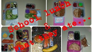 Elementary and Middle School lunch ideas