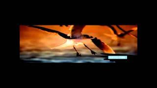 Moula -Hridoy khan feat. Rinty (Hridoy Mix 2)