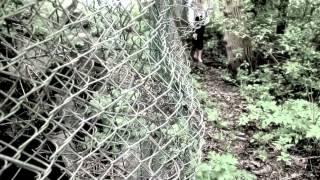 run bitch run (ein Film von Paula Fritze)
