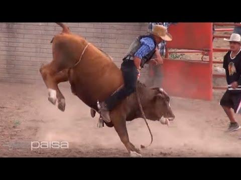 Vaqueros en peligro El Capulin Tepetongo