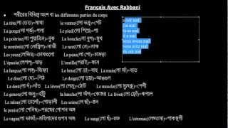 Français avec Rabbani TP n° 3  Doctor