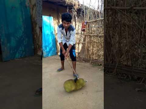 Bhanu yadav