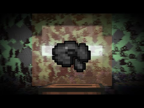 Unsolved Mystery of Minecraft s Disc 11