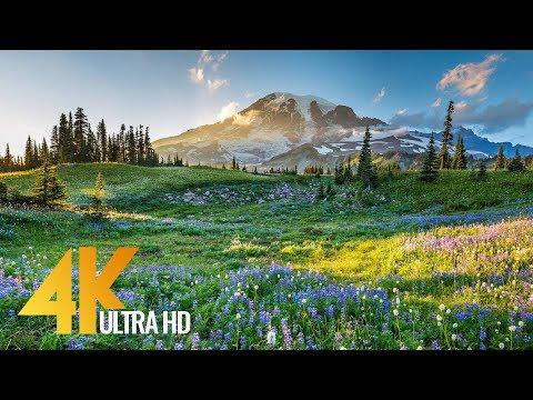 Xxx Mp4 4K Mount Rainier National Park Nature Relax Video Summer Scenery 2 HRS 3gp Sex