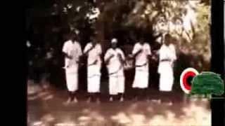 Taaddala Robaa (Tadele Roba) - Argee Uumaa Uumaa Argee Humaa (Oromo-Oromia)
