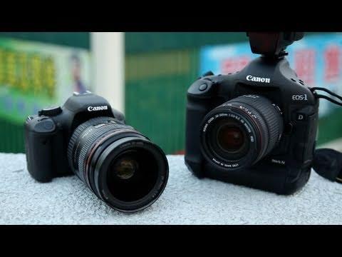 Pro DSLR Cheapo Lens vs Cheapo DSLR Pro Lens
