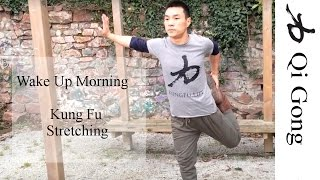 Wake Up Morning Kung Fu Stretch Routine