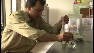 How to Detect formalin on Fruits, Fish and Vegetables by Shwapno Bangla Formalin Tester