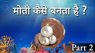 मोती कैसे बनता है ?  || How Oysters Make Pearls || How Are Pearls Formed Naturally