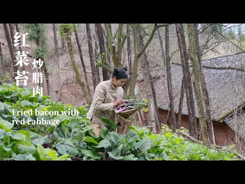 Cooking traditional food and Fried bacon with red cabbage & dried rice in my homeland┃李樟柳 Lizhangliu