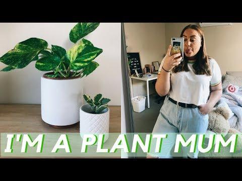 Xxx Mp4 GROCERY HAUL PLANTS THRIFT SHOPPING VLOG 🌿 3gp Sex