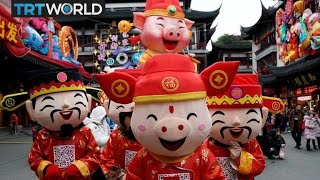 The Year of the Pig   Chinese New Year   Picture This
