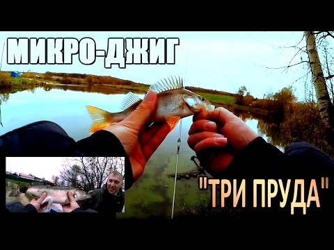 ловля микроджигом на прудах