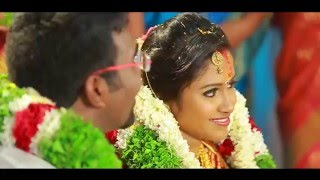 Nitin + Sruthy | Kerala Hindu Wedding 2015 | Highlights by Pranav Movies (Mannar, Alappuzha)