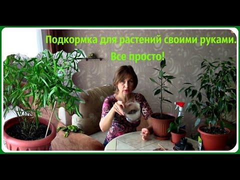 комплексное удобрение для комнатных растений форте