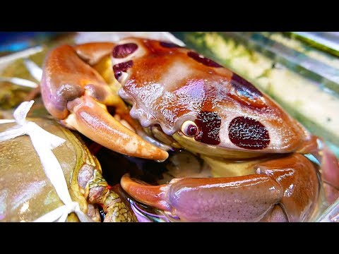 Xxx Mp4 Japan Street Food 7 ELEVEN CRAB Japanese Seafood Okinawa 3gp Sex