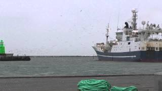 H-34-AV Gardar 30-01-2015 Skagen