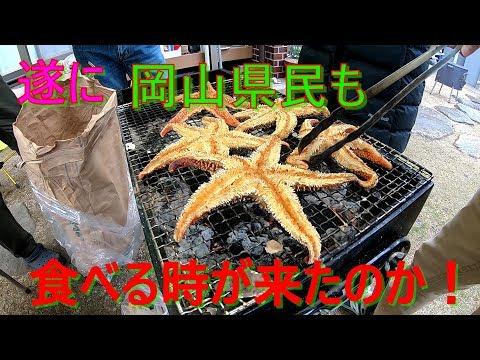 Xxx Mp4 岡山県民が『ヒトデ』を食べる、倉敷玉島で寄島牡蠣BQのついでにヒトデ食べてみた。 3gp Sex