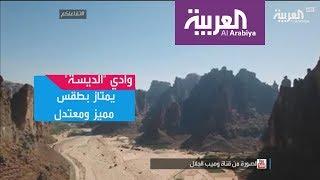 تفاعلكم : مشاهد مبهرة من وادي الديسة في السعودية