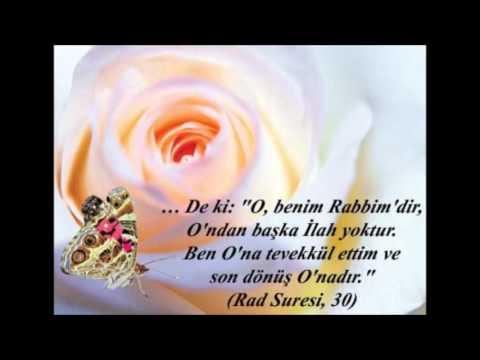 Hasan Dursun Tane Tane