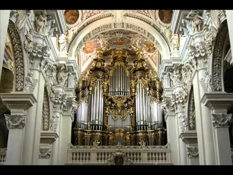 Toccata and Fugue in D Minor Best Version Ever