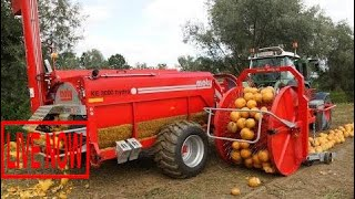 World Amazing Modern Agriculture Mega Machines and Equipment: Bizarre Exotic Tractor and Harve #ARJ