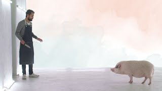 This Film Will TURN YOU VEGAN In 2 Minutes | Vegan News | LIVEKINDLY
