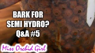 Orchid Q&A #5 | Bark for semi hydro, encouraging root growth and more!