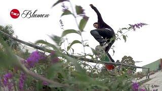 TRAP Skateboards Blumen | TransWorld SKATEboarding