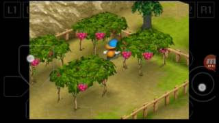 harvest moon back to nature indonesia part 40