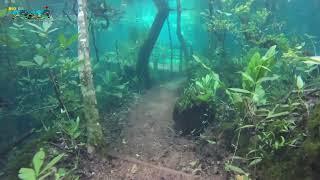 Trilha Submersa no Recanto Ecológico Rio da Prata