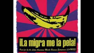 Vicente Fernandez - La Migra