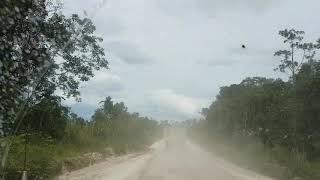 PAMA Hauling Road Coal Mine Central Kalimantan