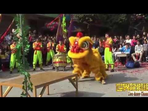 Lion dance 2016 || China 's Panyu Dashi Village Dragon and Lion Dance Group