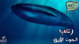 رعب احمد يونس   كارثة الحوت الازرق
